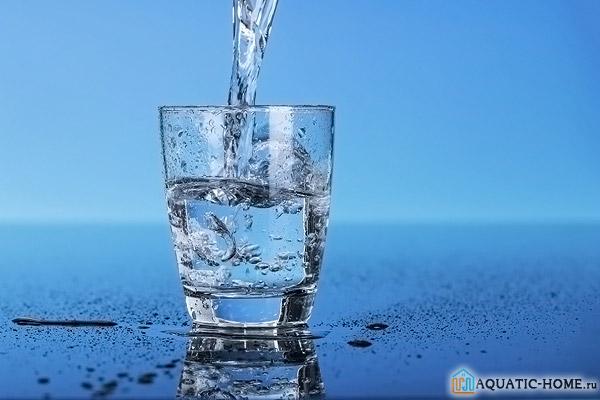 Чистая вода – залог здоровья всех членов семьи