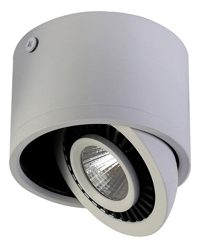 Стильный точечный светильник с поворотным механизмом поможет акцентировать внимание не определенные зоны