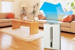 Осушитель воздуха для квартиры: цены, отзывы.