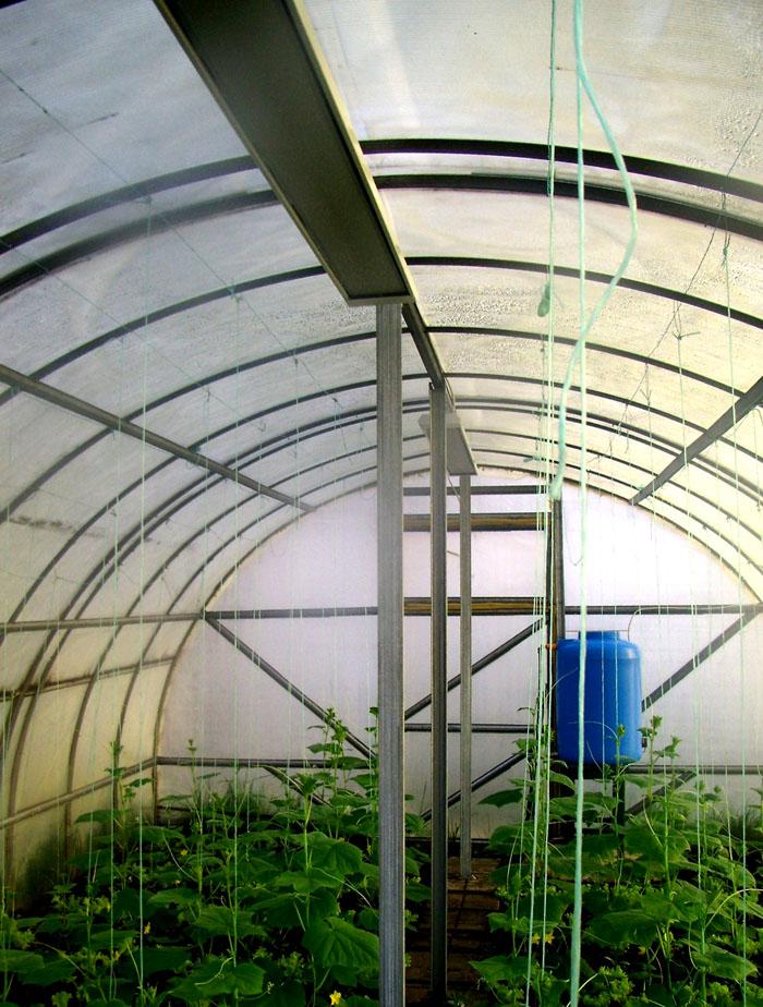 В теплице будут долго работать устройства, приспособленные к повышенной влажности