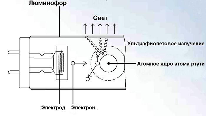 Принцип действия люминесцентного светильника